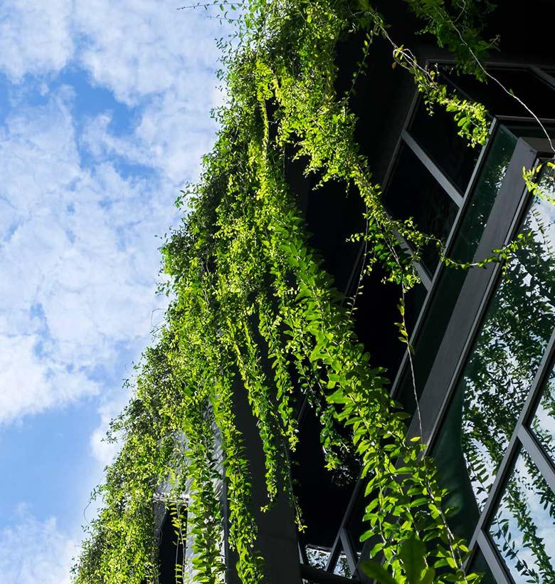 green architecture studio sauro